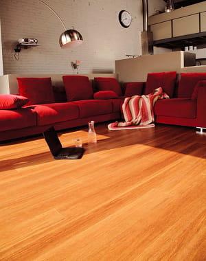 le bambou concurrent du parquet flottant le bambou. Black Bedroom Furniture Sets. Home Design Ideas
