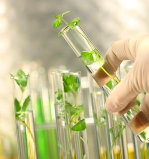 15% des produits chimiques (solvants, peintures, détergents...) seront bientôt
