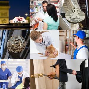 parce que faiblement concurrencées, les professions réglementées peuvent