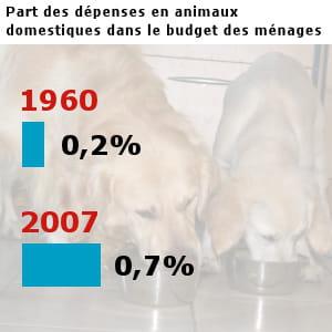 les français ont dépensé pour 5,9 milliards d'euros pour leurs animaux