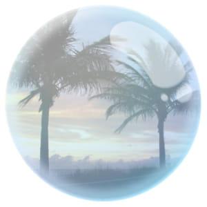 les palmiers de miami attiraient déjàles américains dans l'entre deux guerres.