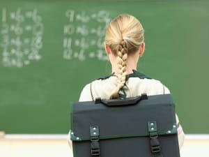 l'enseignement scolaire public du premier degré estévalué en 2010 à 17,6