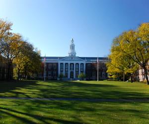 l'université d'harvard.