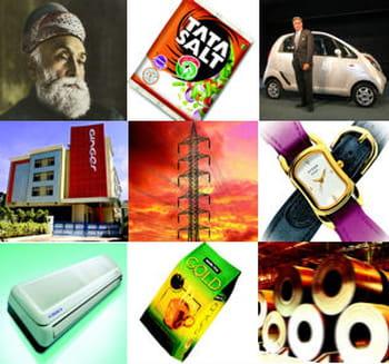 tata possède 98 filiales couvrant 17 secteurs d'activité.