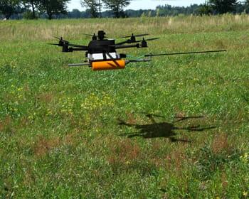 le drone chasseur de frelons.