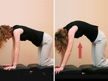 l'exercice du 'dos du chat' permet notammentde lutter contre lessensations de