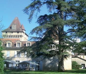 le château de villneuve-sur-yonne.