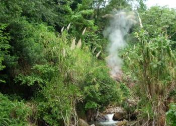 d'origine volcanique, la dominique est sans doute la plus sauvage des îles des
