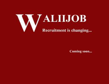 waliiday.com