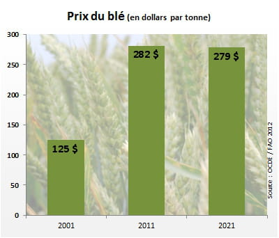 le prix du blé atteindra 279dollars par tonne en2021.