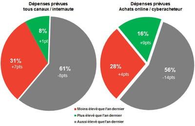 dépenses prévues par internaute tous canaux confondues et dépenses en ligne