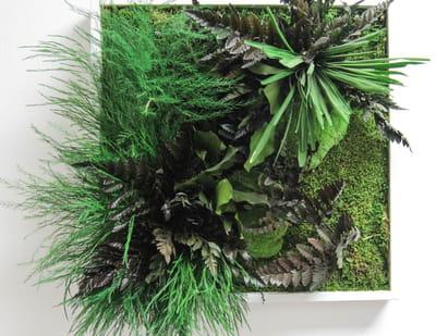 un carré de végétation.