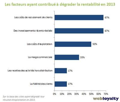 facteurs ayant contribué à dégrader la rentabilité en 2013
