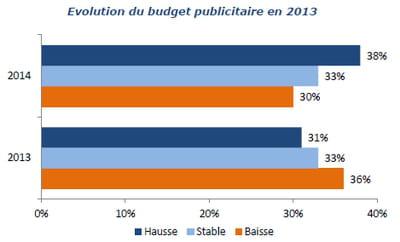 evolution du budget publicitaire en 2013