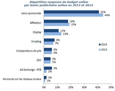 répartition moyenne du budget online par levier publicitaire online en 2013 et
