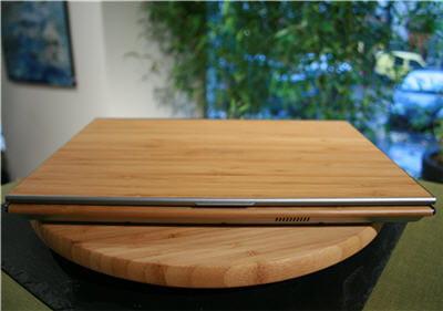 du bambou moso, pour les connaisseurs.