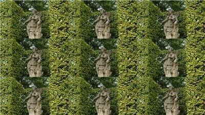 une image, composée de 9 photos identiques, qui recomposée par logiciel, donnera