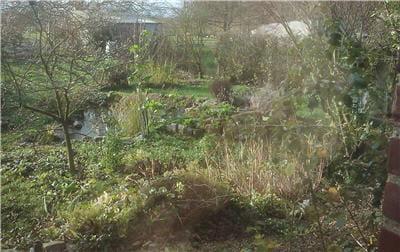 une photo d'un jardin picard prise un après midi de décembre avec le dext. les