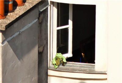 mais que fait cette grenouille et sa guitare à la fenêtre !