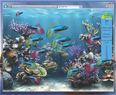 évidemment, tout ceci est présenté animé et fluide, poissons et algues bougent,