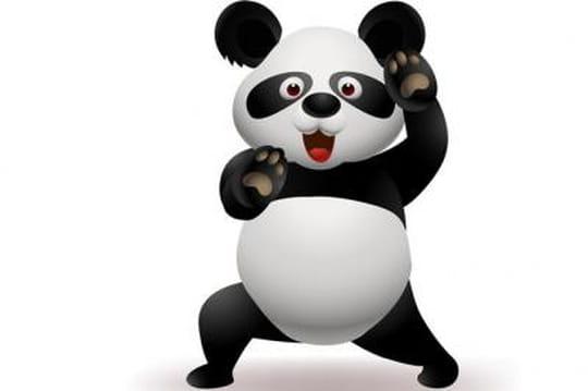 """Une mise à jour de Google Panda déployée en même temps que l'algorithme """"anti-EMD"""""""