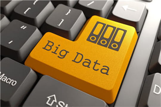 Big Data dans les entreprises (Markess International)