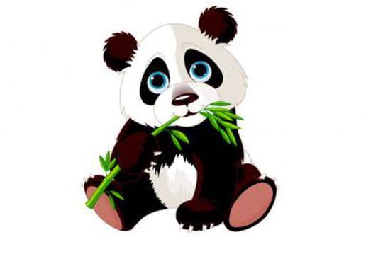 Google Panda 4.1 : la liste Searchmetrics des perdants et des gagnants aux Etats-Unis