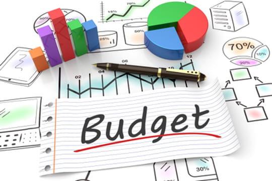 Budgets des DSI