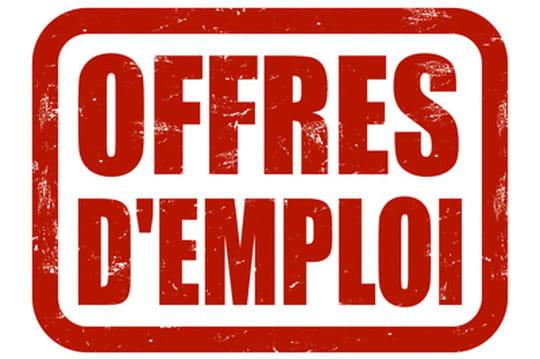 Informatique le volume d 39 offres d 39 emploi continue de cro tre for Offre d emploi chef de cuisine