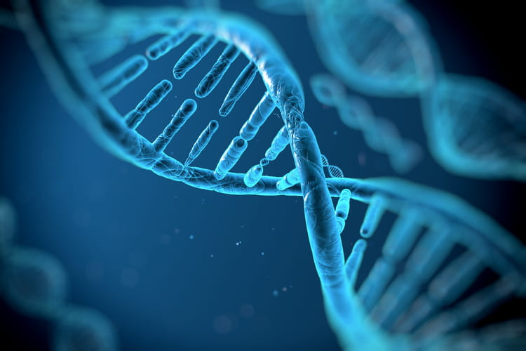 Editas Medicine est une technologie qui corrige les gènes pour soigner des maladies