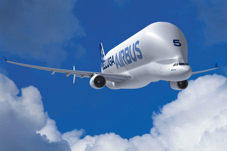 L 39 avion singulier du groupe airbus - Quel est le plus grand porte avion du monde ...
