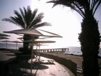 c'est à boca raton, près de palm beach, que l'idée des dérivés de crédits a
