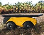 le robot de vitirover.