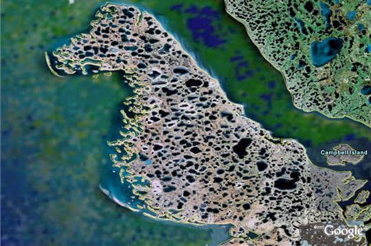 Ile dalmatienne