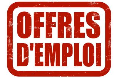 Informatique le volume d 39 offres d 39 emploi continue de cro tre - Offre d emploi carre senart ...