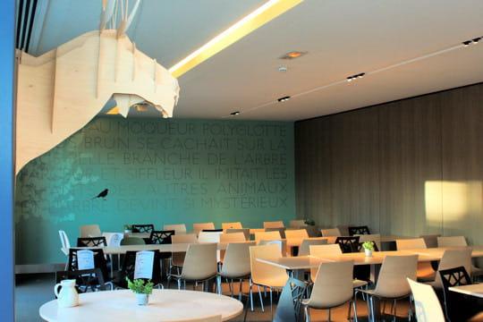 Un restaurant d entreprise au cœur une clairière le