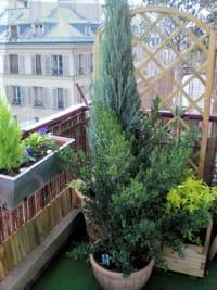 une terrasse parisienne.