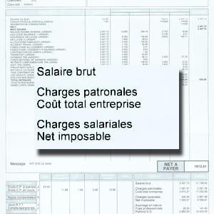 a quoi correspond le salaire imposable d chiffrer une fiche de paie un bulletin de salaire. Black Bedroom Furniture Sets. Home Design Ideas
