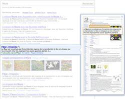 le service de prévisualisation de google