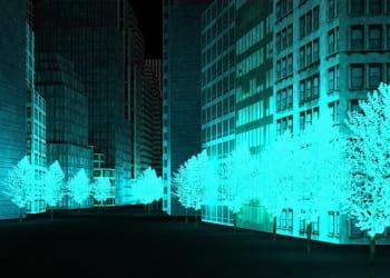 les arbres bioluminescents.