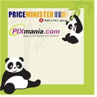 pixmania et priceminister n'ont pas mis en place les mêmes stratégies seo pour